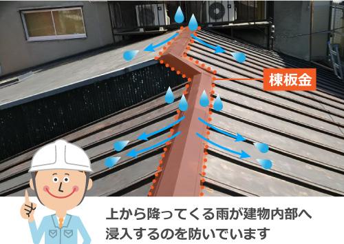 棟板金は雨が建物内部へ浸入するのを防いでいます