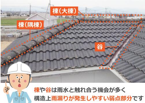 棟や谷は構造上雨漏りが発生しやすい弱点部分です