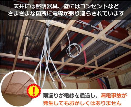 電線が張り巡らされた天井