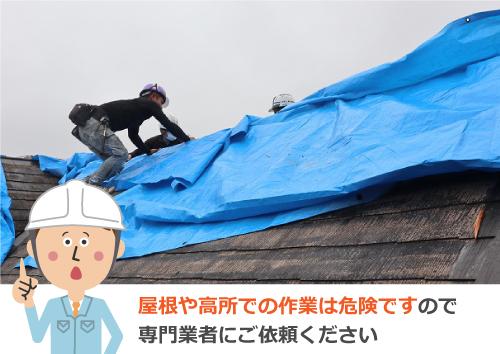 ブルーシートによる屋根の雨養生