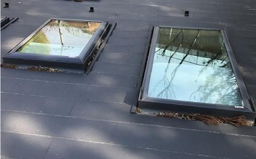 落ち葉が詰まった天窓