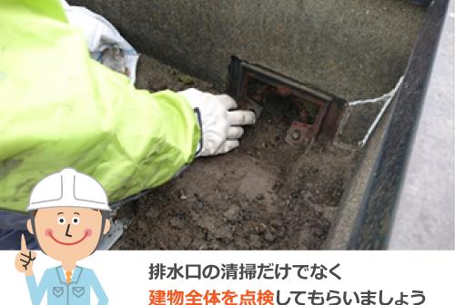 排水口の清掃だけでなく建物前提を点検してもらいましょう