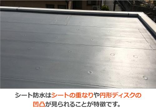 シート防水はシートの重なりや円形ディスクの凹凸面が見られることが特徴です