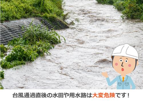 台風通過後の水田や用水路は大変危険です