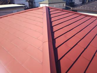屋根は一見問題が無いように見えます