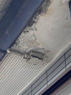 都城市で長年雨漏りしていて玄関の天井に穴が開いてしまっているお宅へ現地調査