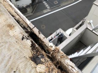劣化した桟木