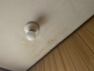 雨漏りで天井が黒くシミになっていました