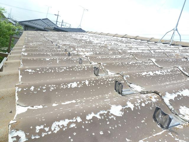 塗膜が剥がれた屋根のアップ