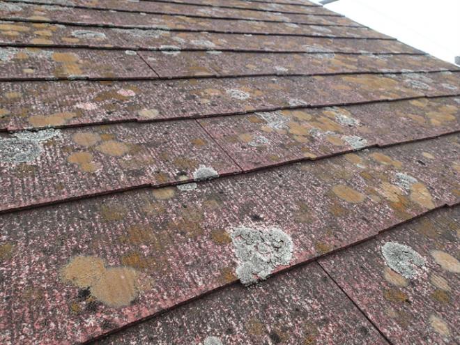 東金市上武射田にて雨漏りが発生している化粧スレート屋根材と棟・谷板金を調査