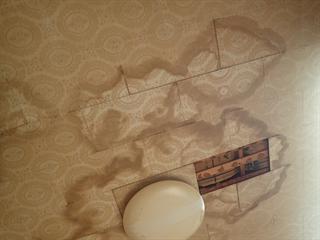 雨漏りによって剥がれた天井