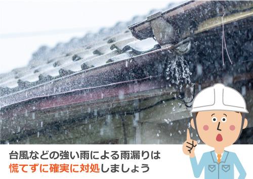 台風などの強い雨による雨漏りは慌てずに確実に対処しましょう