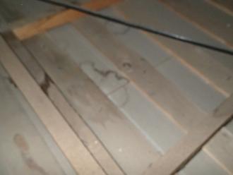 三鷹市北野にて築40年以上のお住いで雨漏り調査、屋根のメンテナンスは定期的に!