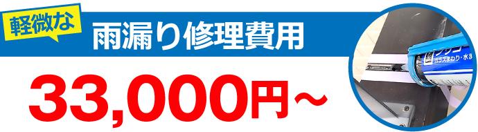 軽微な雨漏り修理費用16,500円~