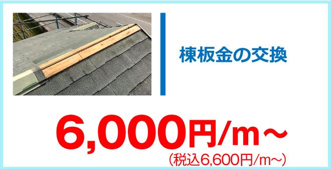 棟板金交換6,600円/m~
